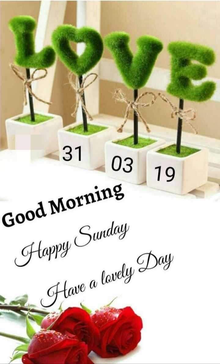 🌞সুপ্রভাত - 03 19 Good Morning Happy Sunday Have a lovely Day - ShareChat