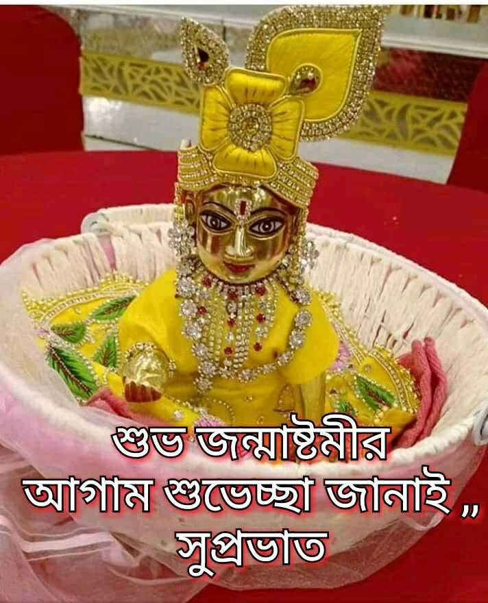 🌞সুপ্রভাত - শুভ জন্মাষ্টমীর আগাম শুভেচ্ছা জানাই , . সুপ্রভাত - ShareChat