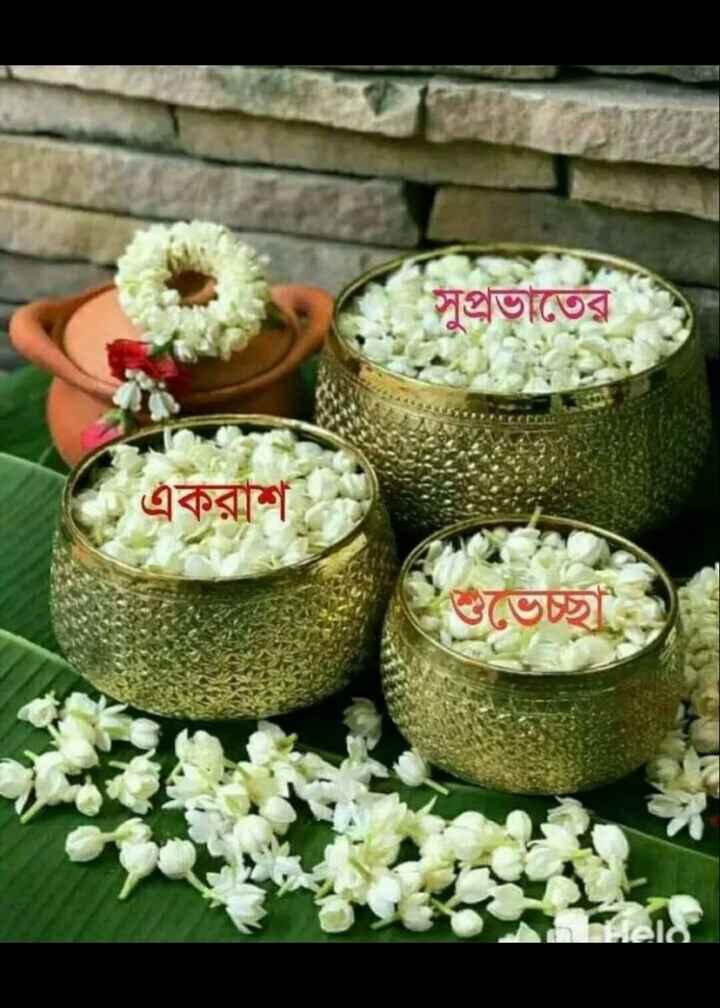 🌞সুপ্রভাত - সুপ্রভাতে একরাশ - ShareChat