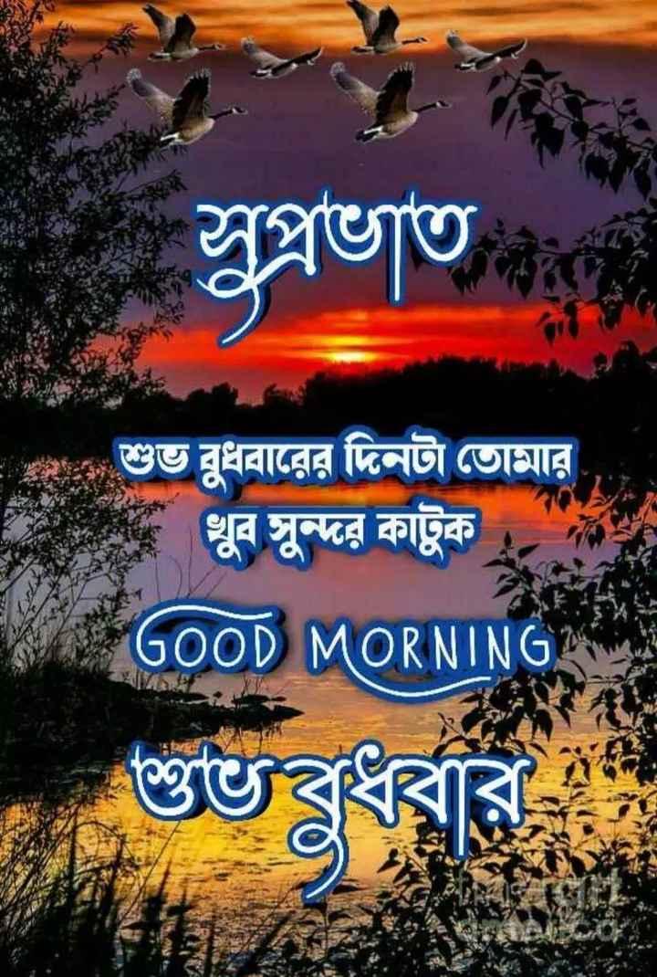 🌞সুপ্রভাত - সুপ্রভাত D } শুভ বুধবারের দিনটা তােমার খুব সুন্দর কাটুক । GOOD MORNING শুভবুধব - ShareChat