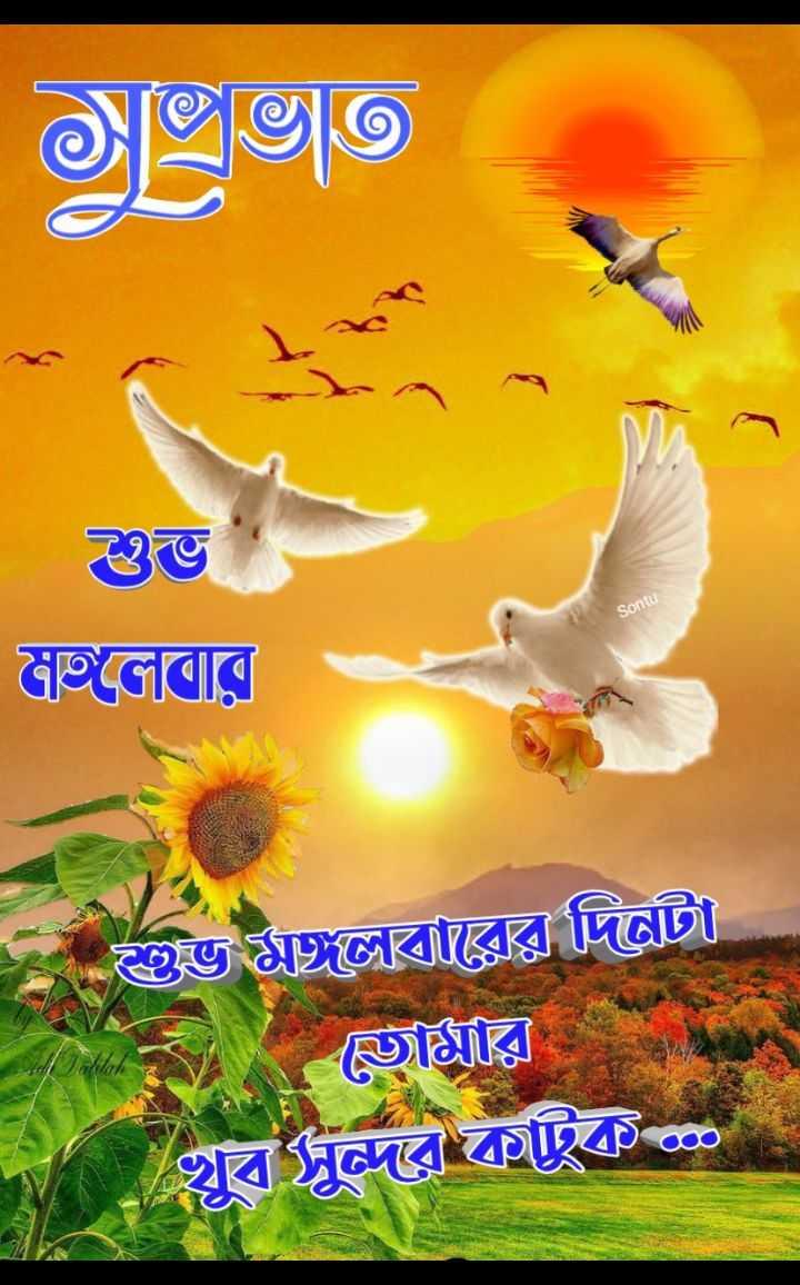 🌞সুপ্রভাত - © [ ভ© ) শুভ সজলের Sontu - জি লেবারের দিন ভার | খুব সুন্দর কাছিক - ShareChat