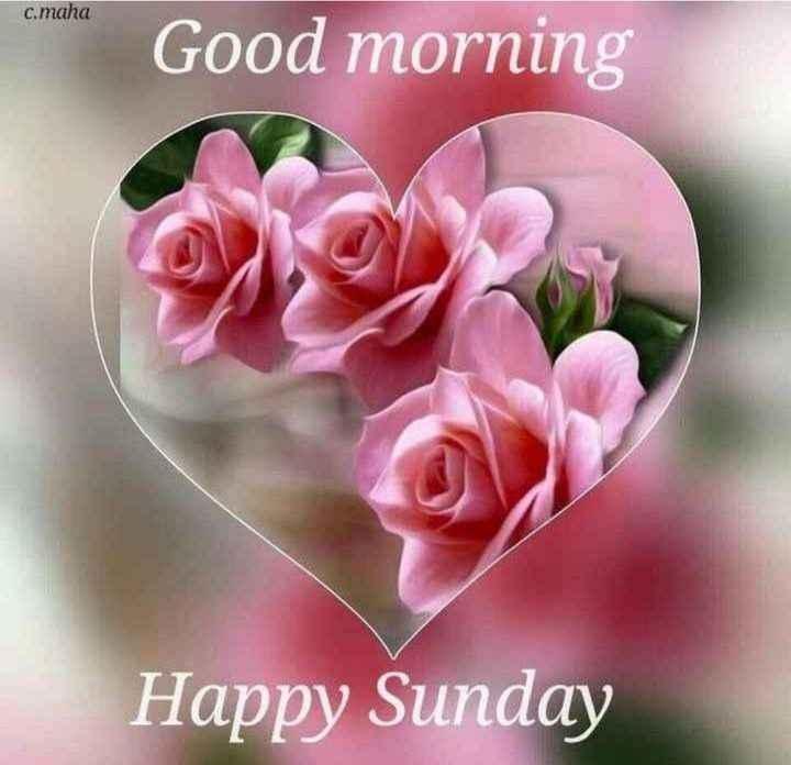 🌞সুপ্রভাত - c . maha Good morning Happy Sunday - ShareChat