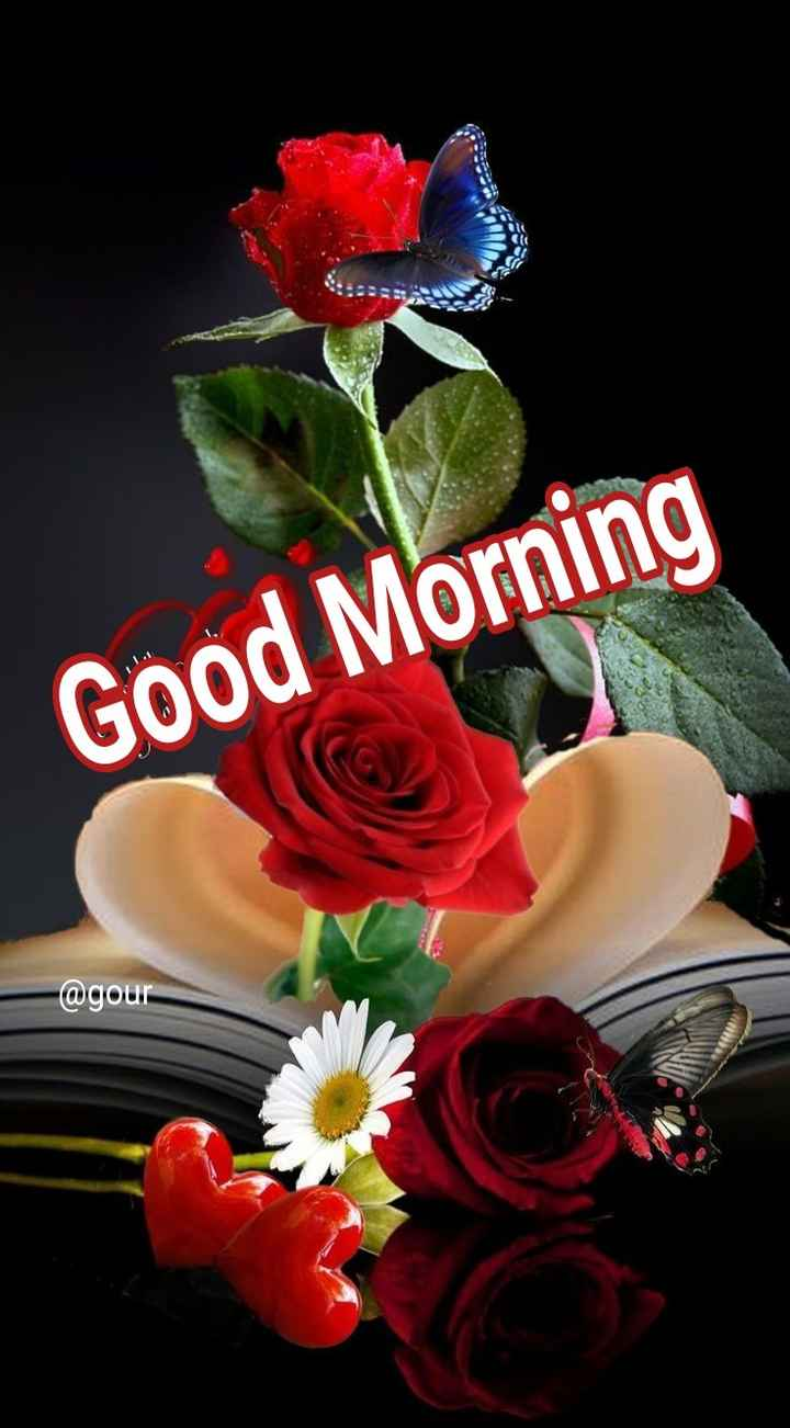 🌞সুপ্রভাত - Good Morning @ gour - ShareChat