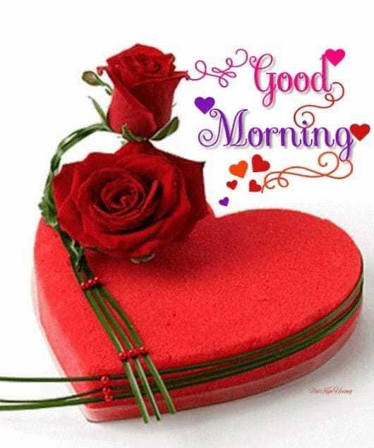 🌞সুপ্রভাত - og 2 Goods Morning - ShareChat