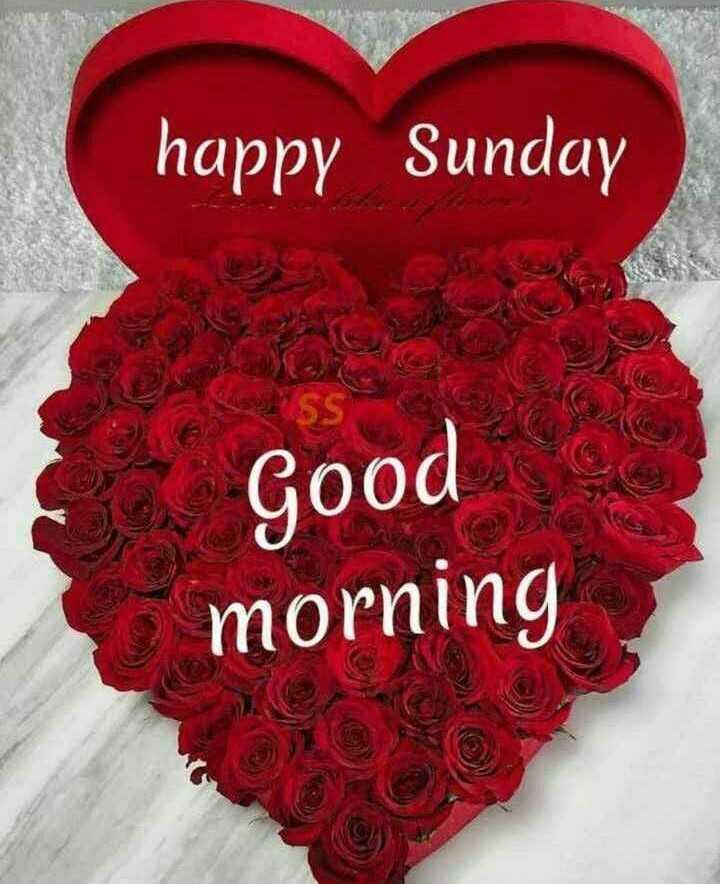 🌞সুপ্রভাত - happy Sunday Good morning - ShareChat