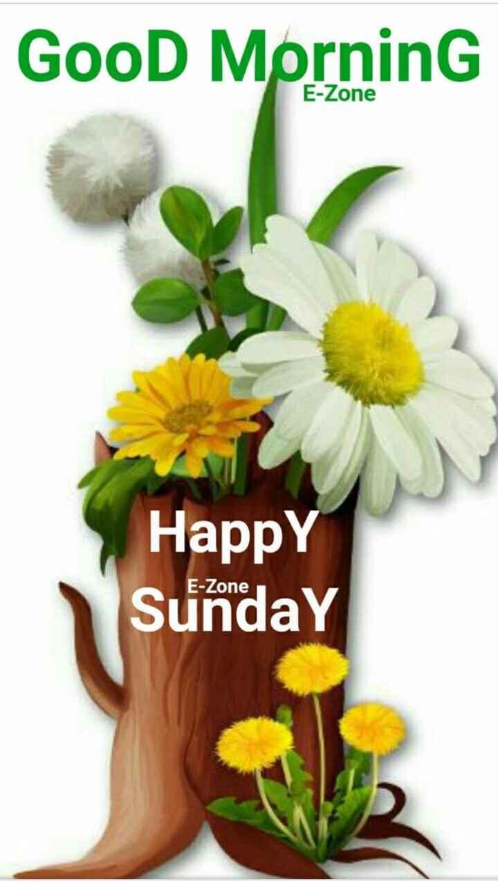 🌞সুপ্রভাত - Good Morning E - Zone Happy Sunday E - Zone - ShareChat