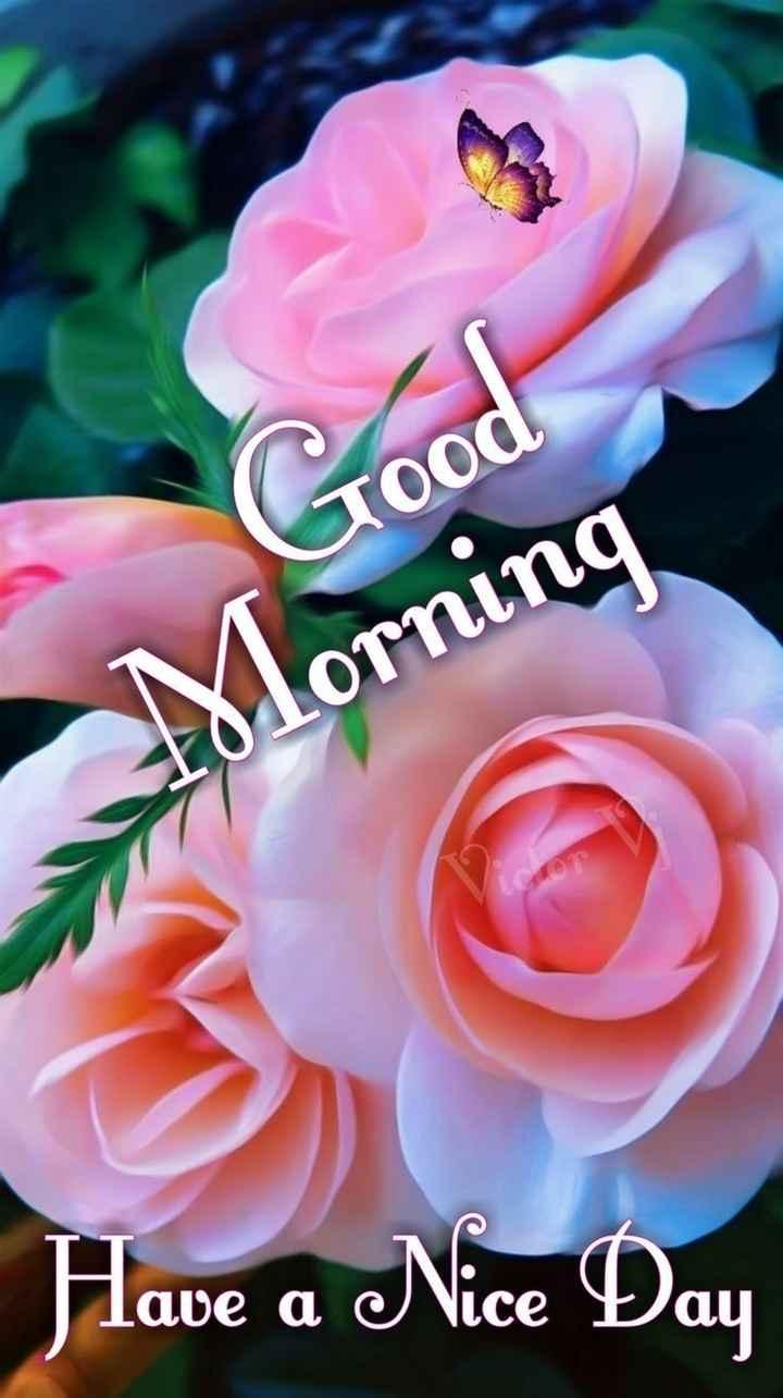 🌞 সুপ্ৰভাত - Good 101ornina Have a Nice Day - ShareChat