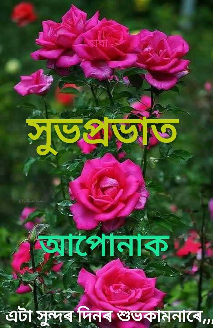 🌞 সুপ্ৰভাত - | সুভপ্রভাত আপােনাক এটা সুন্দৰ দিনৰ শুভকামনাৰে , - ShareChat