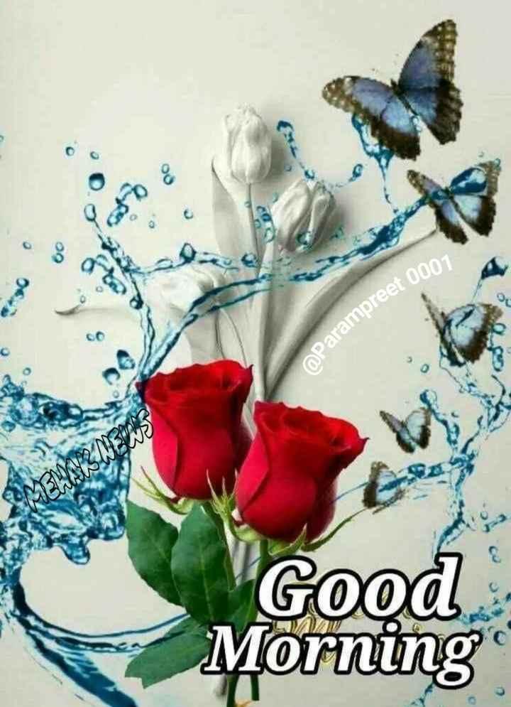 🌞 সুপ্ৰভাত - Parampreet 0007 MSN Good Lorning - ShareChat