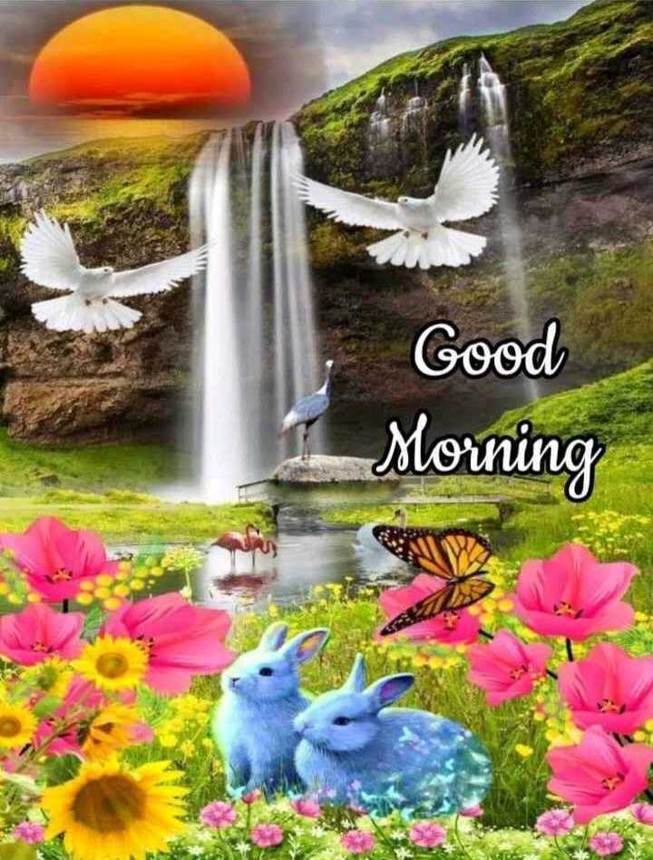 🌞 সুপ্ৰভাত - Good Morning - ShareChat
