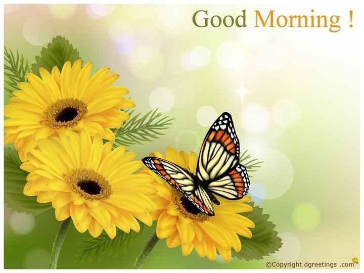 🌞 সুপ্ৰভাত - Good Morning ! © Copyright dgreetings . com - ShareChat