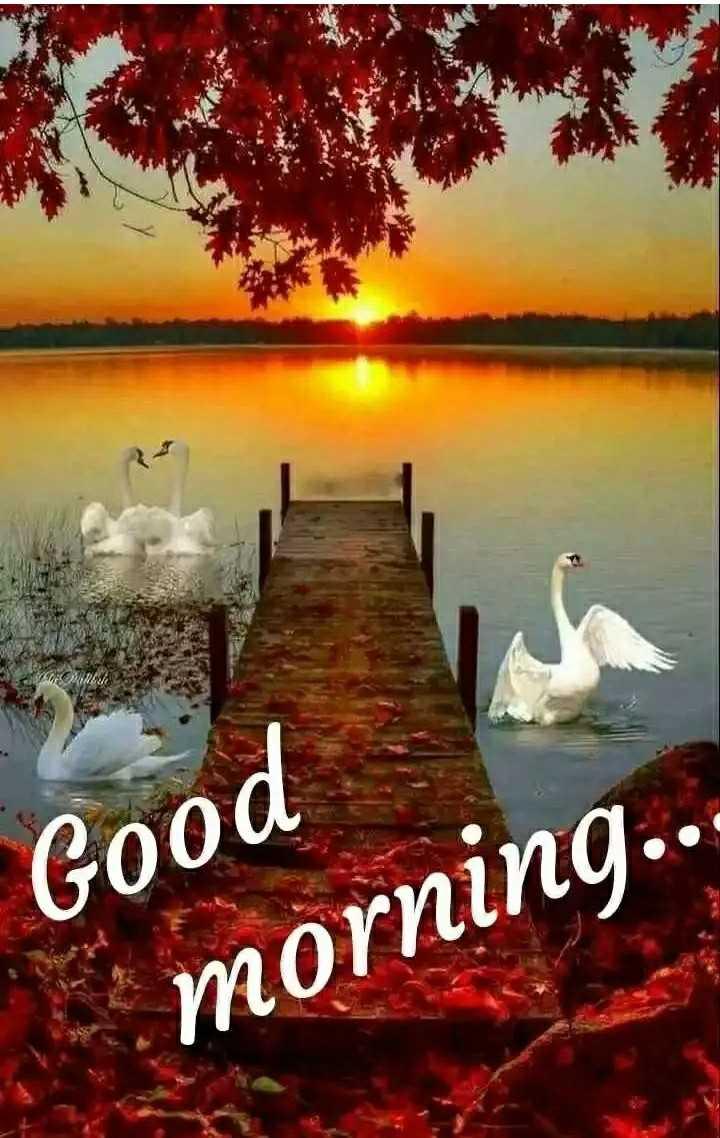 🌞 সুপ্ৰভাত - VO Good morning . . . - ShareChat