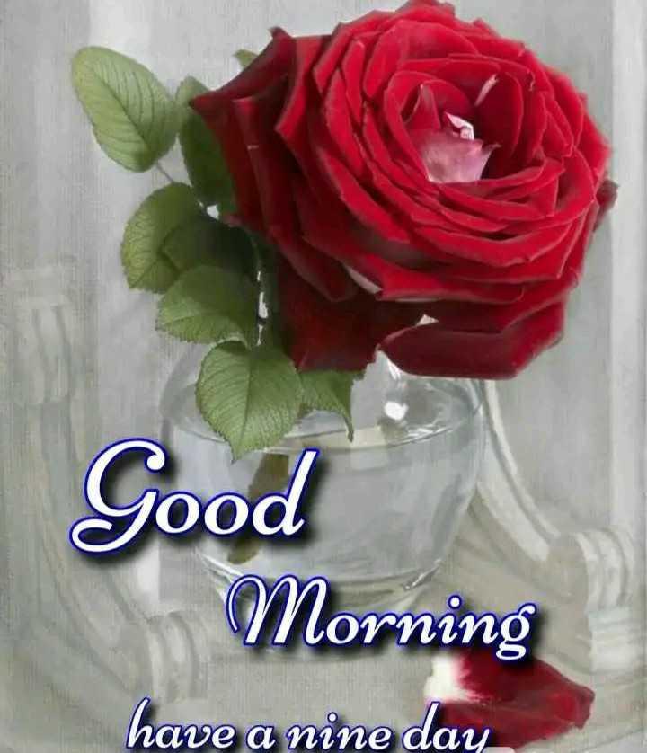🌷 সুপ্ৰভাত - Good Morning have a nine day - ShareChat