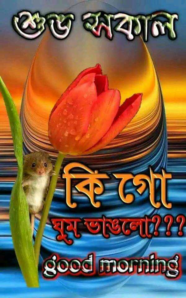 সুপ্ৰভাত - গুজ বকাল ঘুম ভজজো - - good morning - ShareChat
