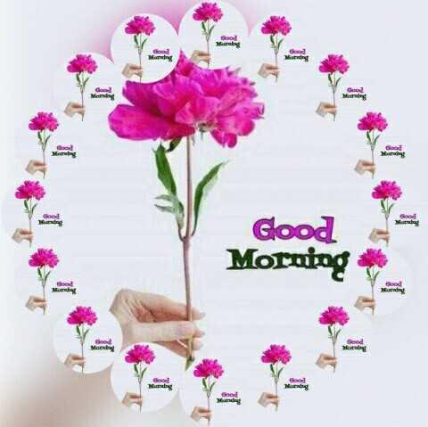 🌞 সুপ্ৰভাত - Merate M . Good Morning Morg Wordig - ShareChat