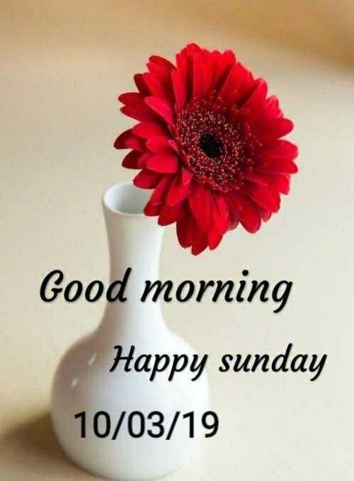 🌞 সুপ্ৰভাত - Good morning Happy sunday 10 / 03 / 19 - ShareChat