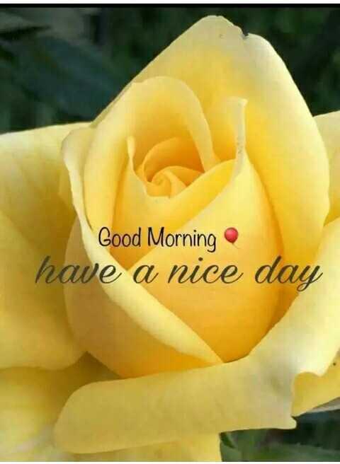 🌞 সুপ্ৰভাত - Good Morning have a nice day - ShareChat