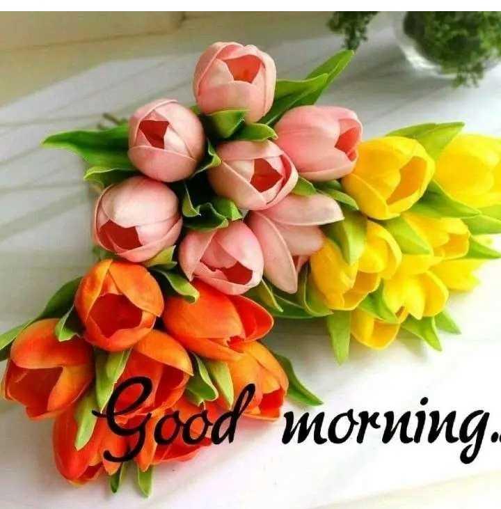 🌞 সুপ্ৰভাত - Good morning . - ShareChat