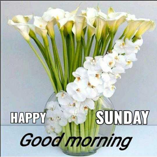 🌞 সুপ্ৰভাত - HAPPY SUNDAY Good morning - ShareChat
