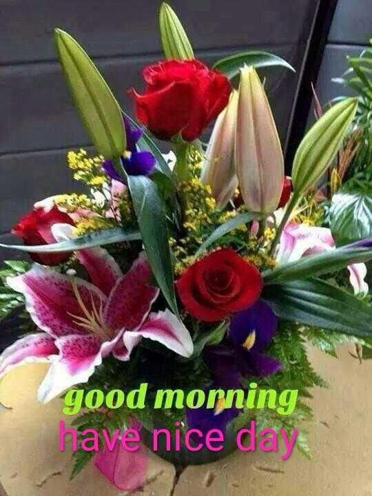 🌞 সুপ্ৰভাত - good morning have nice day - ShareChat