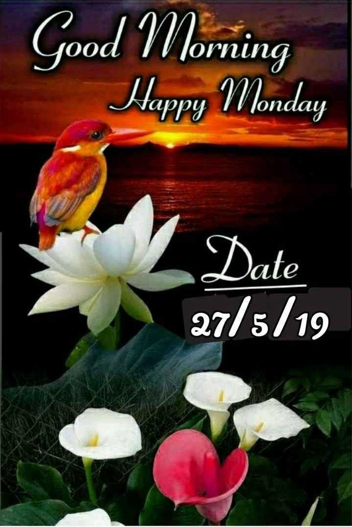 🌞 সুপ্ৰভাত - Good Morning Happy Monday Vappu londay Date 27 / 5 / 19 - ShareChat