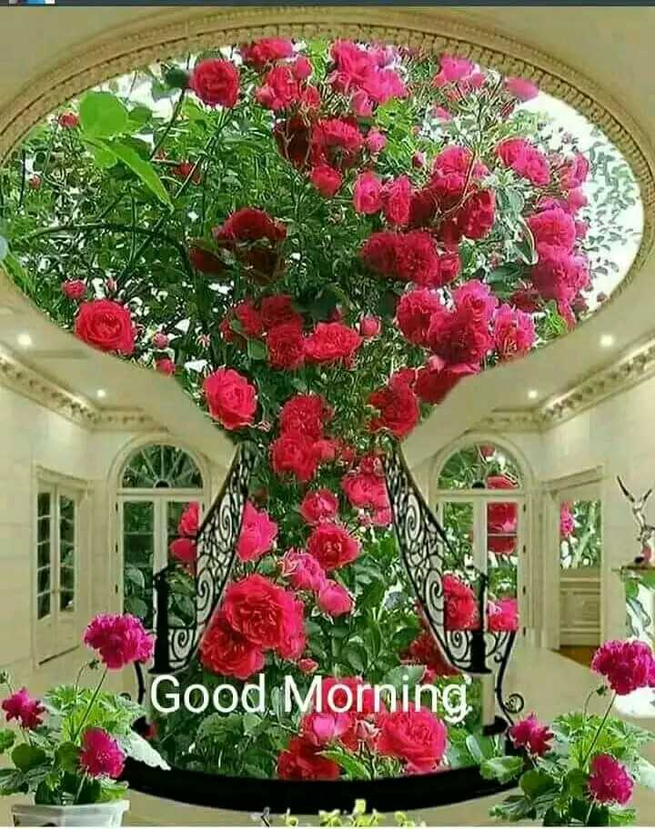 🌞 সুপ্ৰভাত - Good Morning 6 - ShareChat