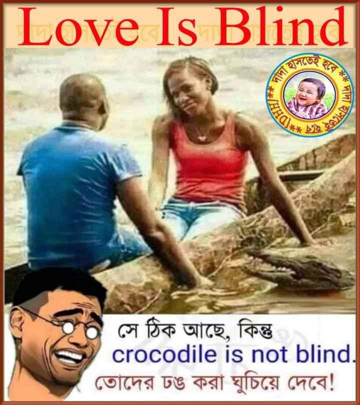😂হাস্যকর ছবি - Love Is Blind আসতেই # দাদাত * DHH * হাসতে সে ঠিক আছে , কিন্তু crocodile is not blind . তােদের ঢঙ করা ঘুচিয়ে দেবে ! - ShareChat