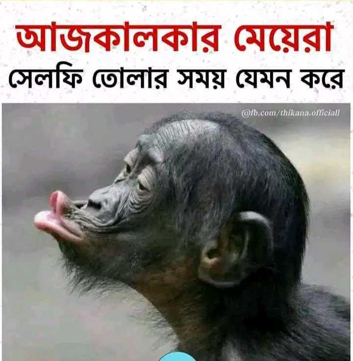 😂হাস্যকর ছবি - আজকালকার মেয়েরা সেলফি তােলার সময় যেমন করে @ fb . com / thikana . officiall - ShareChat