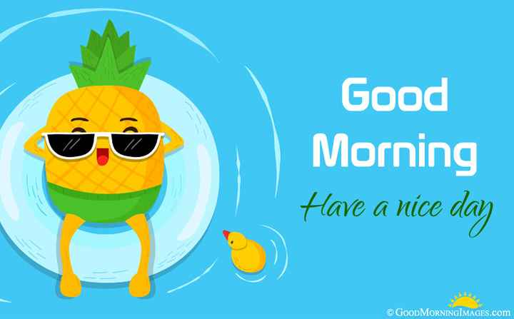 🤣হাস্যকর ভিডিও - Good Morning Have a nice day © GOOD MORNINGIMAGES . com - ShareChat