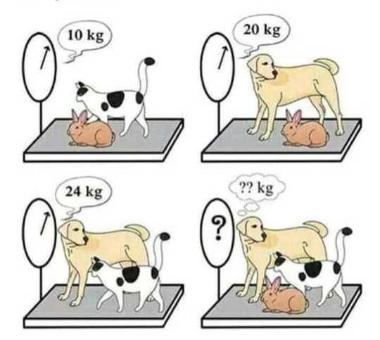 😁হাস্য কৌতুক - 10 kg 20 kg 24 kg - ShareChat