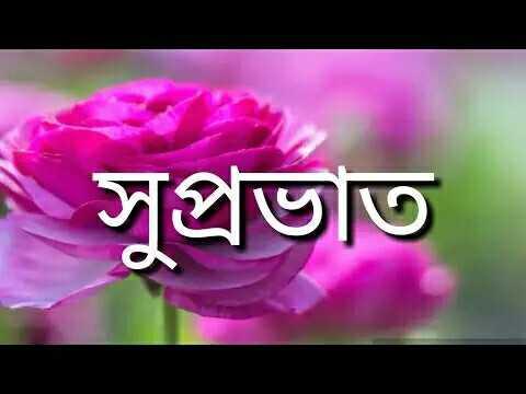 😎 হোৱাটচ এপ স্টেটাছ - সুপ্রভাত - ShareChat
