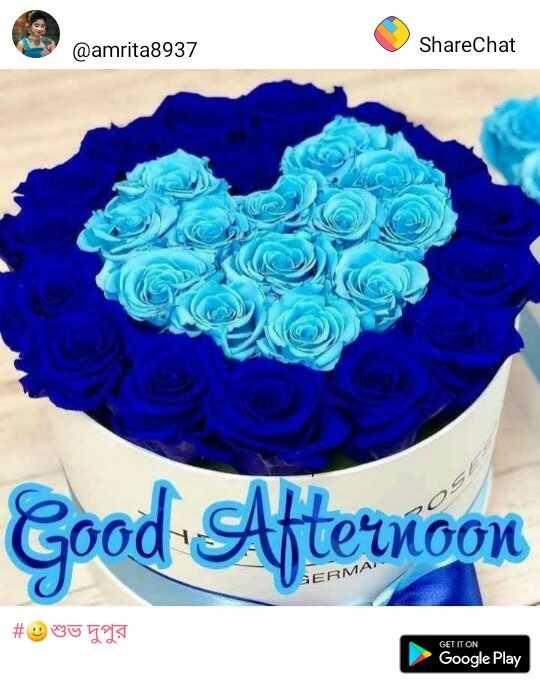 🎂 হ্যাপি বার্থডে - @ amrita8937 ShareChat Good Afternoon МА # 0919 GET IT ON Google Play - ShareChat