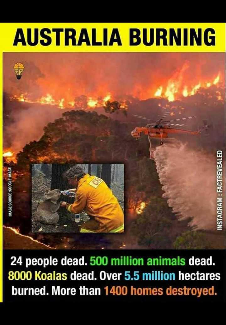 🙏 ਇੱਕ ਅਰਦਾਸ ਆਸਟ੍ਰੇਲੀਆ ਲਈ - AUSTRALIA BURNING IMAGE SOURCE : GOOGLE IMAGE INSTAGRAM : FACTREVEALED 24 people dead . 500 million animals dead . 8000 Koalas dead . Over 5 . 5 million hectares burned . More than 1400 homes destroyed . - ShareChat