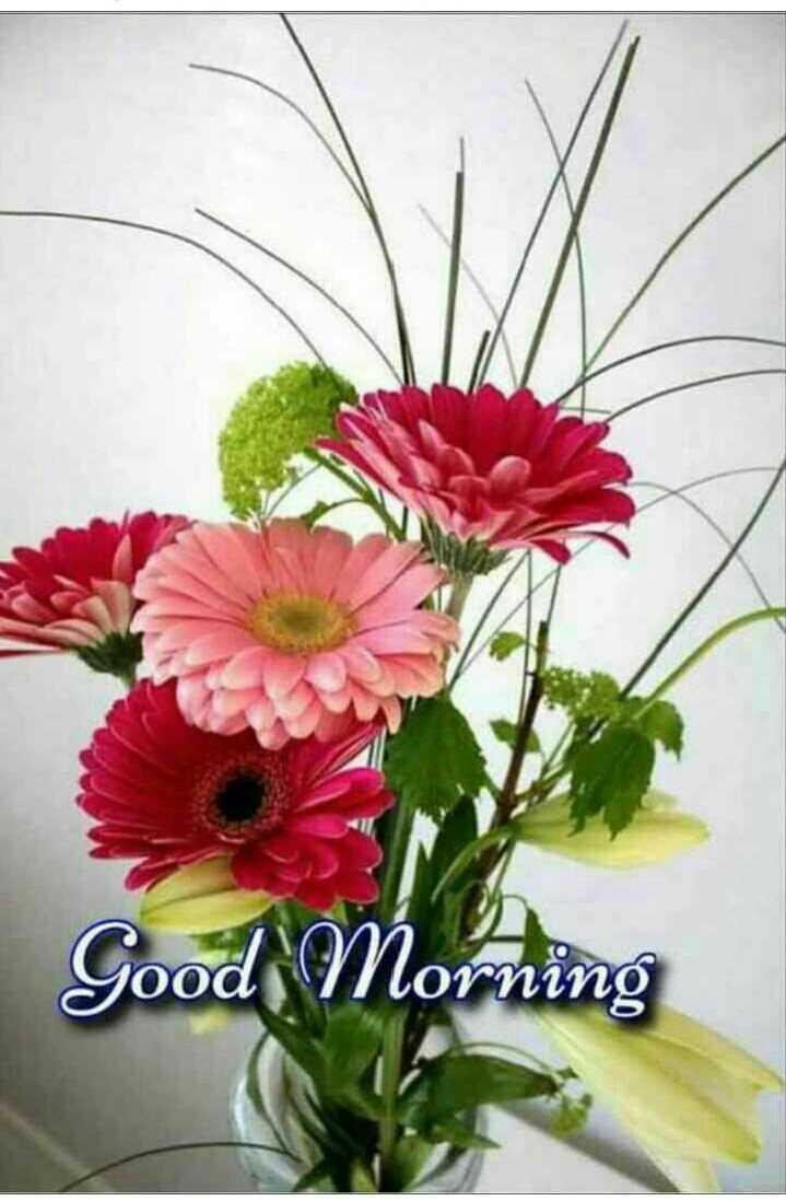 🌻 ਕੁਦਰਤ ਨਾਲ ਪਿਆਰ - Good Morning - ShareChat
