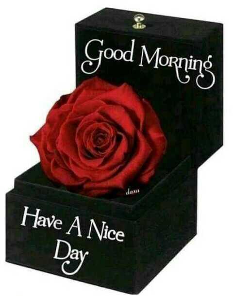 🌇ਗੁੱਡ ਈਵਨਿੰਗ - Good Morning Have A Nice Day - ShareChat