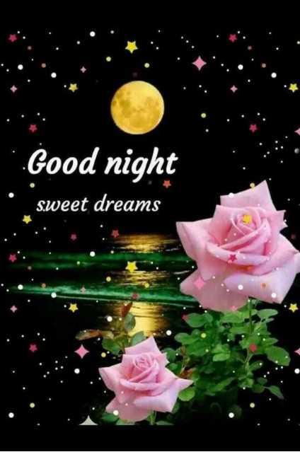 🌙  ਗੁੱਡ ਨਾਇਟ ਵੀਡੀਓ - . . Good night sweet dreams - ShareChat