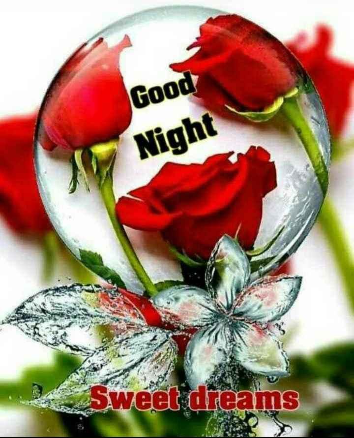 🌙  ਗੁੱਡ ਨਾਇਟ ਵੀਡੀਓ - Good Night A Sweet dreams - ShareChat