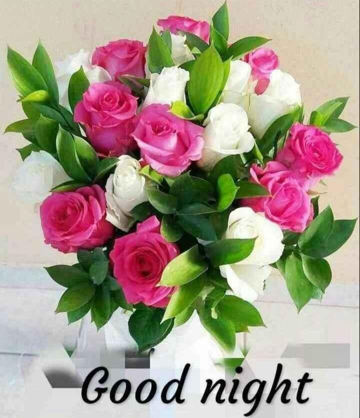 🌙  ਗੁੱਡ ਨਾਇਟ ਵੀਡੀਓ - Good night - ShareChat