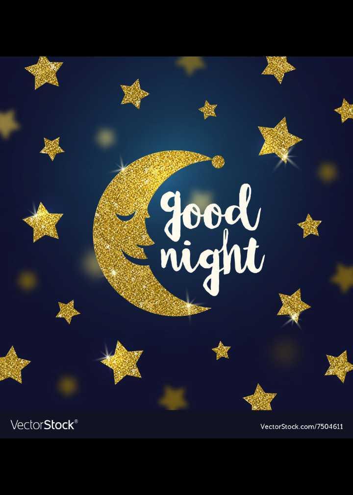 🌙  ਗੁੱਡ ਨਾਇਟ ਵੀਡੀਓ - good night Vector Stock VectorStock . com / 7504611 - ShareChat