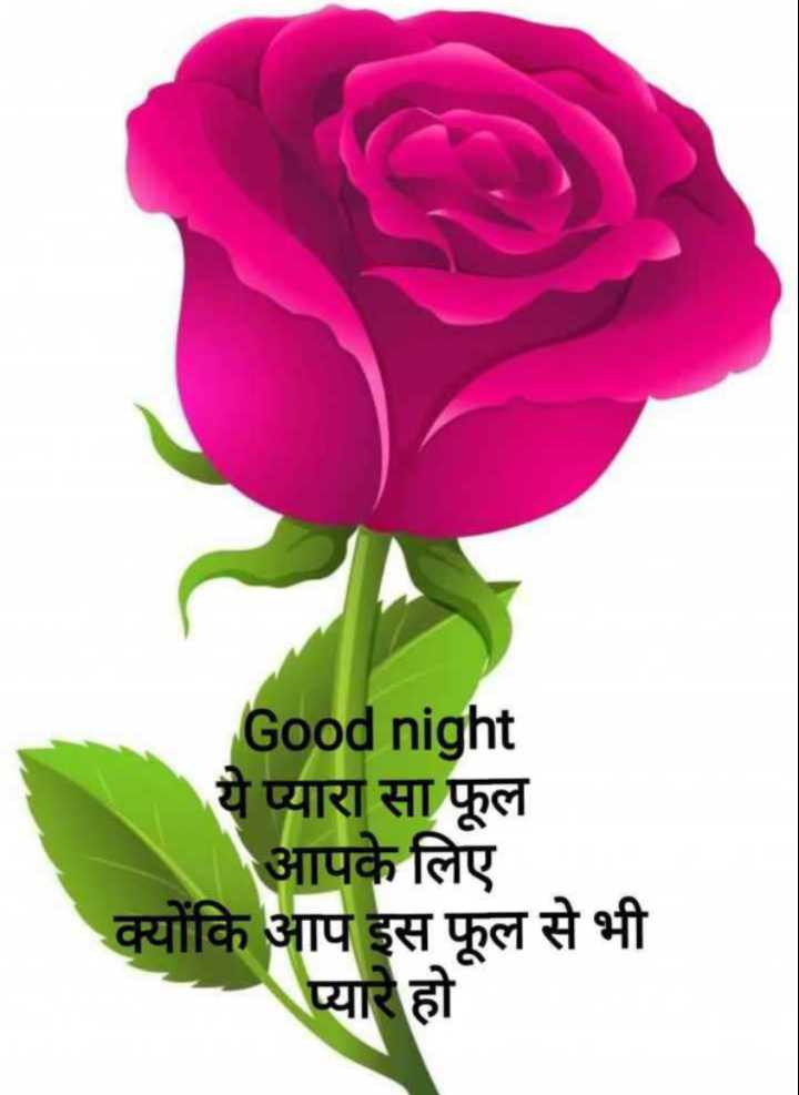 🌙 ਗੁੱਡ ਨਾਇਟ ਵੀਡੀਓ - Good night ये प्यारा सा फूल आपके लिए क्योंकि आप इस फूल से भी प्यारे हो - ShareChat