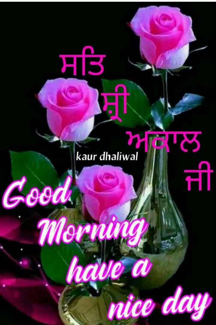 🌙  ਗੁੱਡ ਨਾਇਟ ਵੀਡੀਓ - ਤਿ kaur dhaliwal Good Morning have a nice day - ShareChat