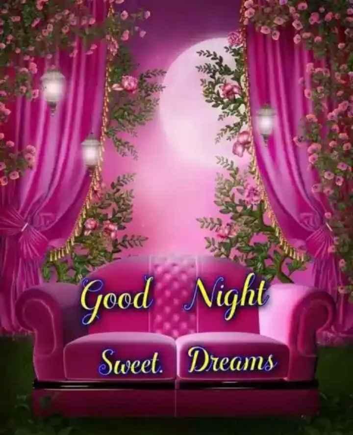 🌙  ਗੁੱਡ ਨਾਇਟ ਵੀਡੀਓ - Good Sweet Dreams - ShareChat