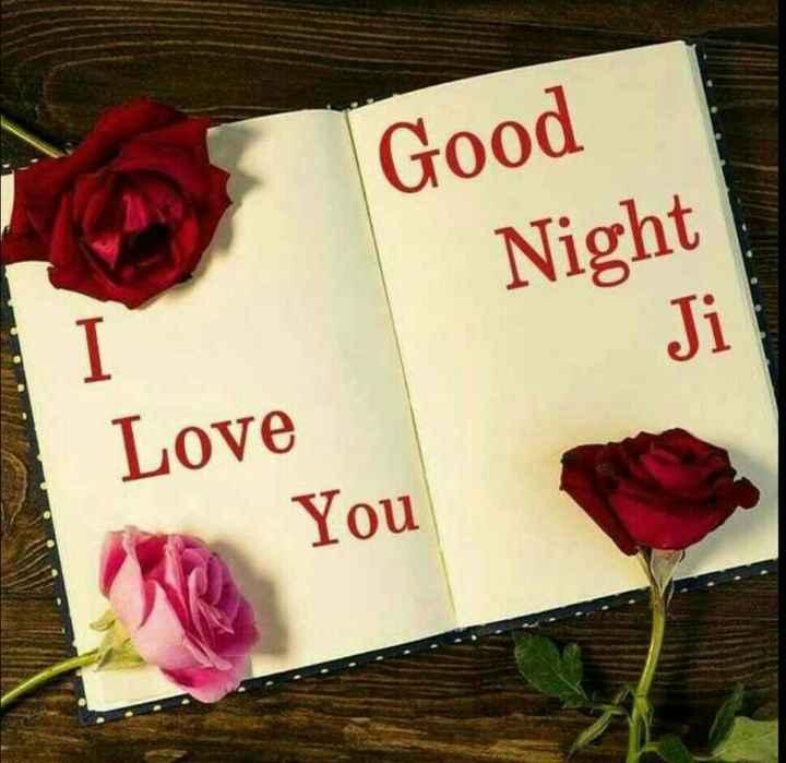 🌙  ਗੁੱਡ ਨਾਇਟ ਵੀਡੀਓ - Good Night Love You - ShareChat