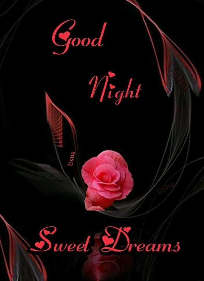 🌙  ਗੁੱਡ ਨਾਇਟ - Good Night Usha Usha Usha Sweet Dreams - ShareChat