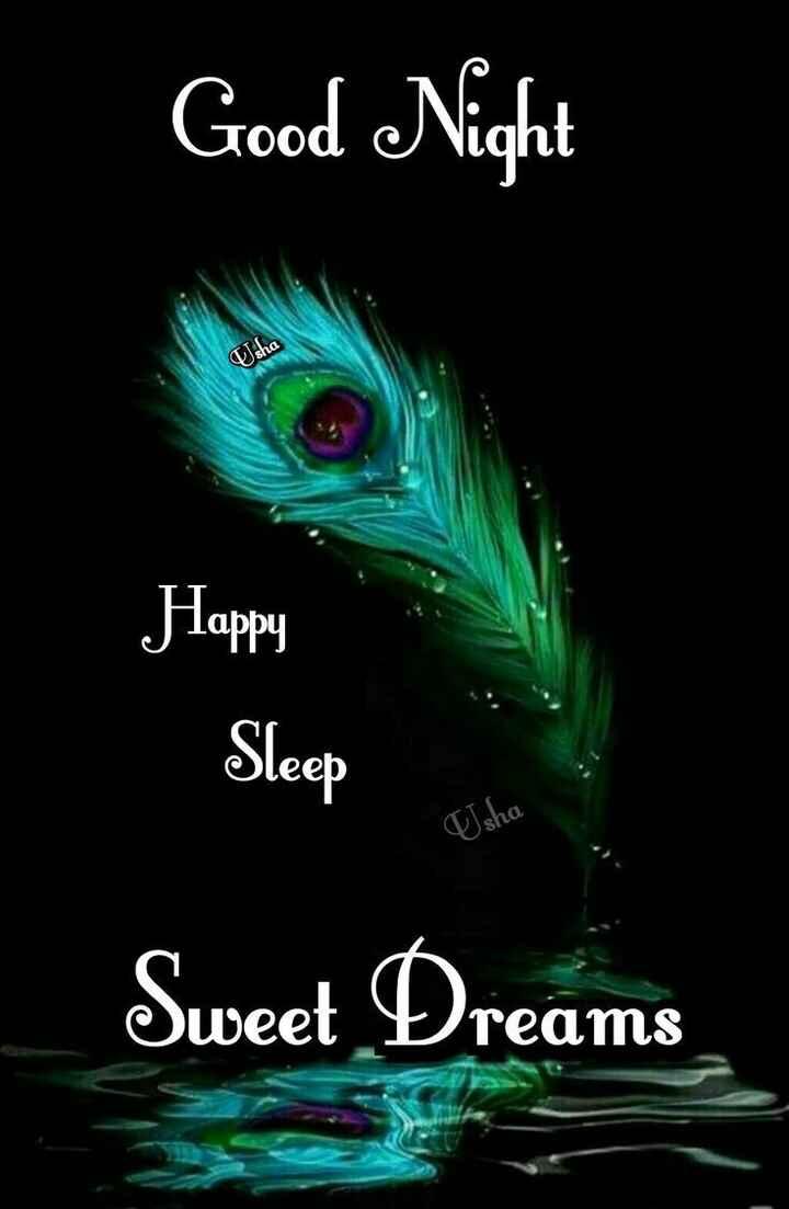 🌙  ਗੁੱਡ ਨਾਇਟ - Good Night Usha Happy Sleep sha Sweet Dreams - ShareChat