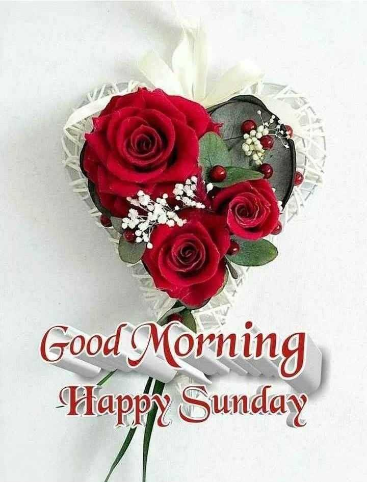 🌅 ਗੁੱਡ ਮੋਰਨਿੰਗ - Good Morning Happy Sunday - ShareChat