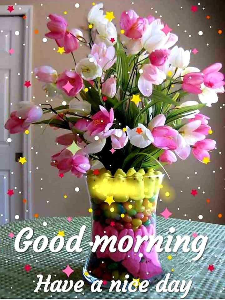 🌅 ਗੁੱਡ ਮੋਰਨਿੰਗ - Good morning Have a nice day - ShareChat