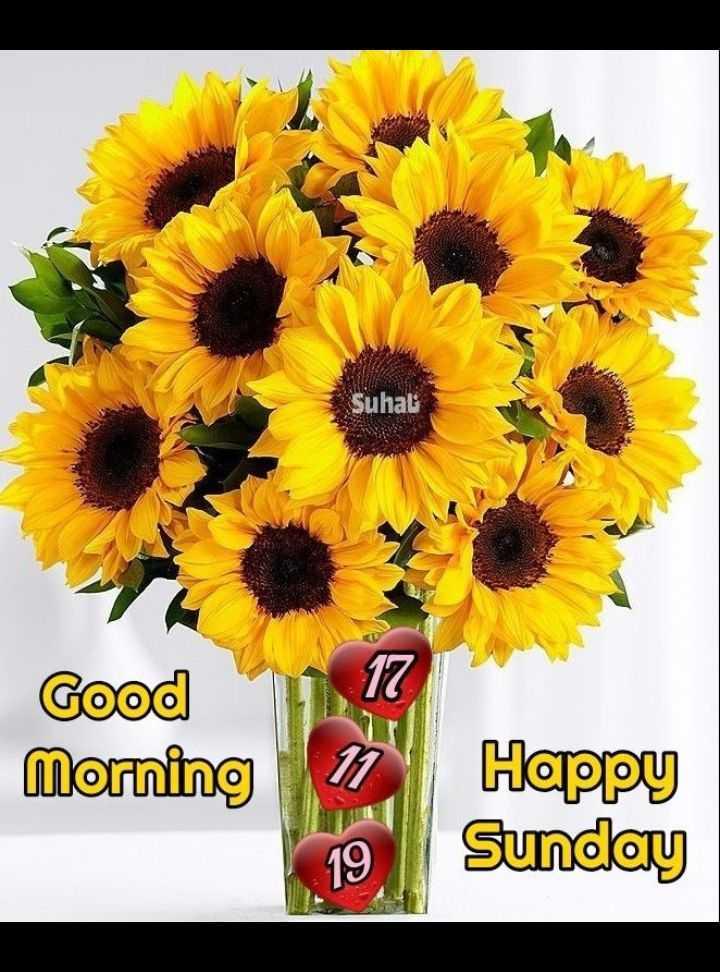 🌅 ਗੁੱਡ ਮੋਰਨਿੰਗ - Suhat 17 Good Morning Happy Sunday - ShareChat