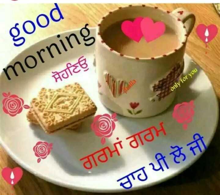 🌅 ਗੁੱਡ ਮੋਰਨਿੰਗ - good morning , ਸੋਹਣਿਓ / only for you ਗਰਮਾਂ ਗਰਮ . ਚਾਹ ਪੀ ਲੋ ਜੀ - ShareChat