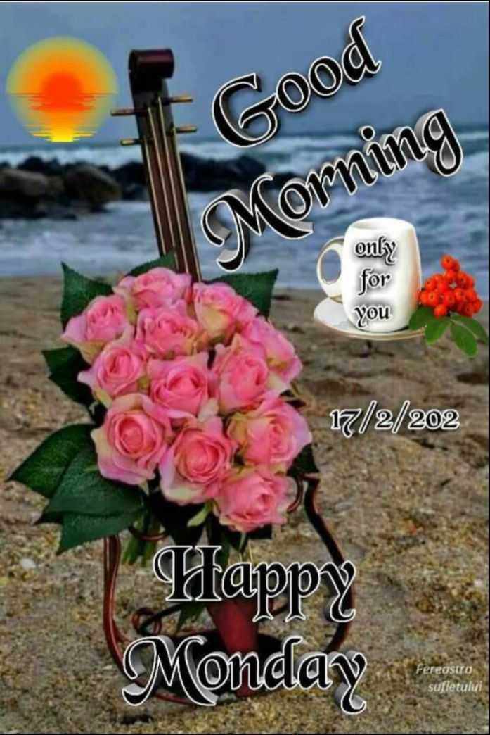 🌅 ਗੁੱਡ ਮੋਰਨਿੰਗ - Good Morning only you 17 / 2 / 202 Lappy Monday va Fereastro sufletului - ShareChat